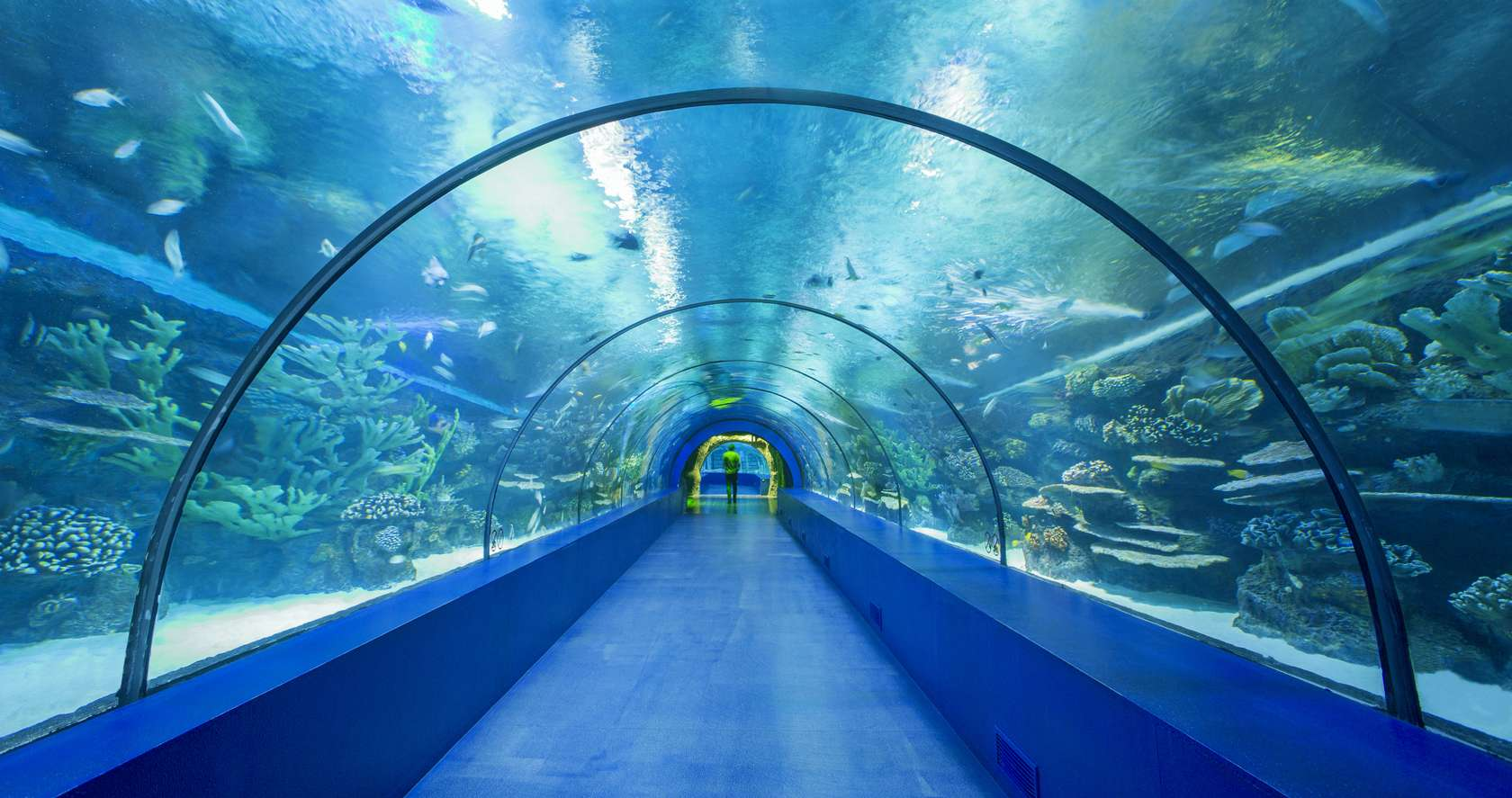 Antalya Aquarium - Architizer