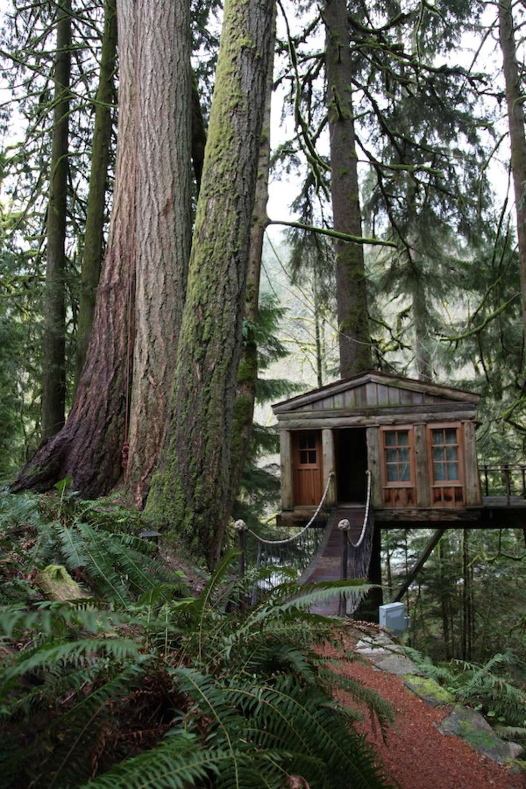treehouse masters prices animal planet s treehouse